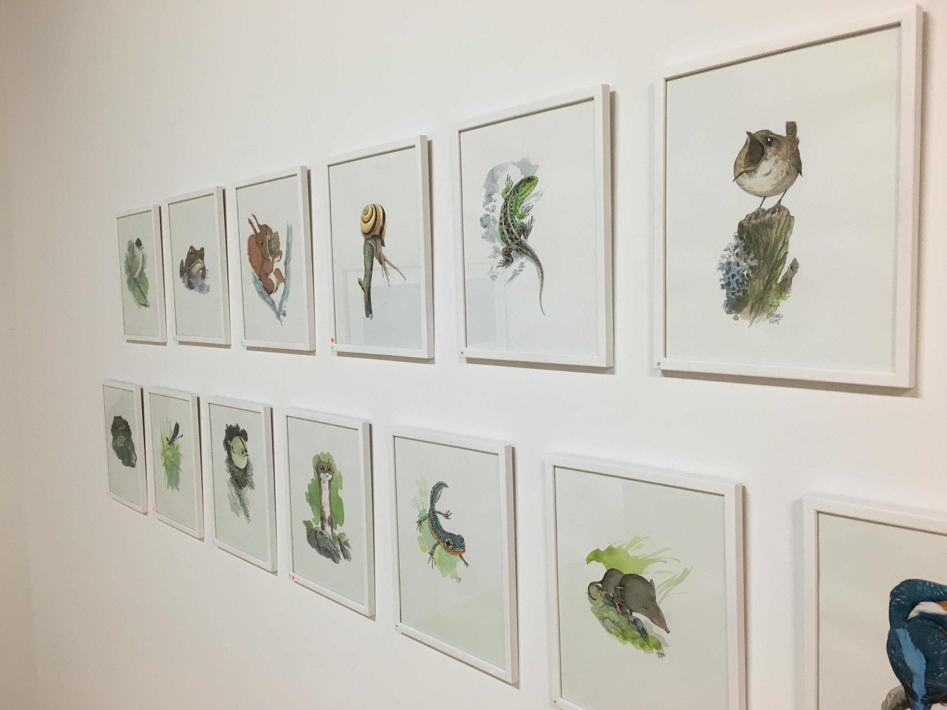 Quelques-unes de ses illustrations à voir à la Galerie du Sauvage