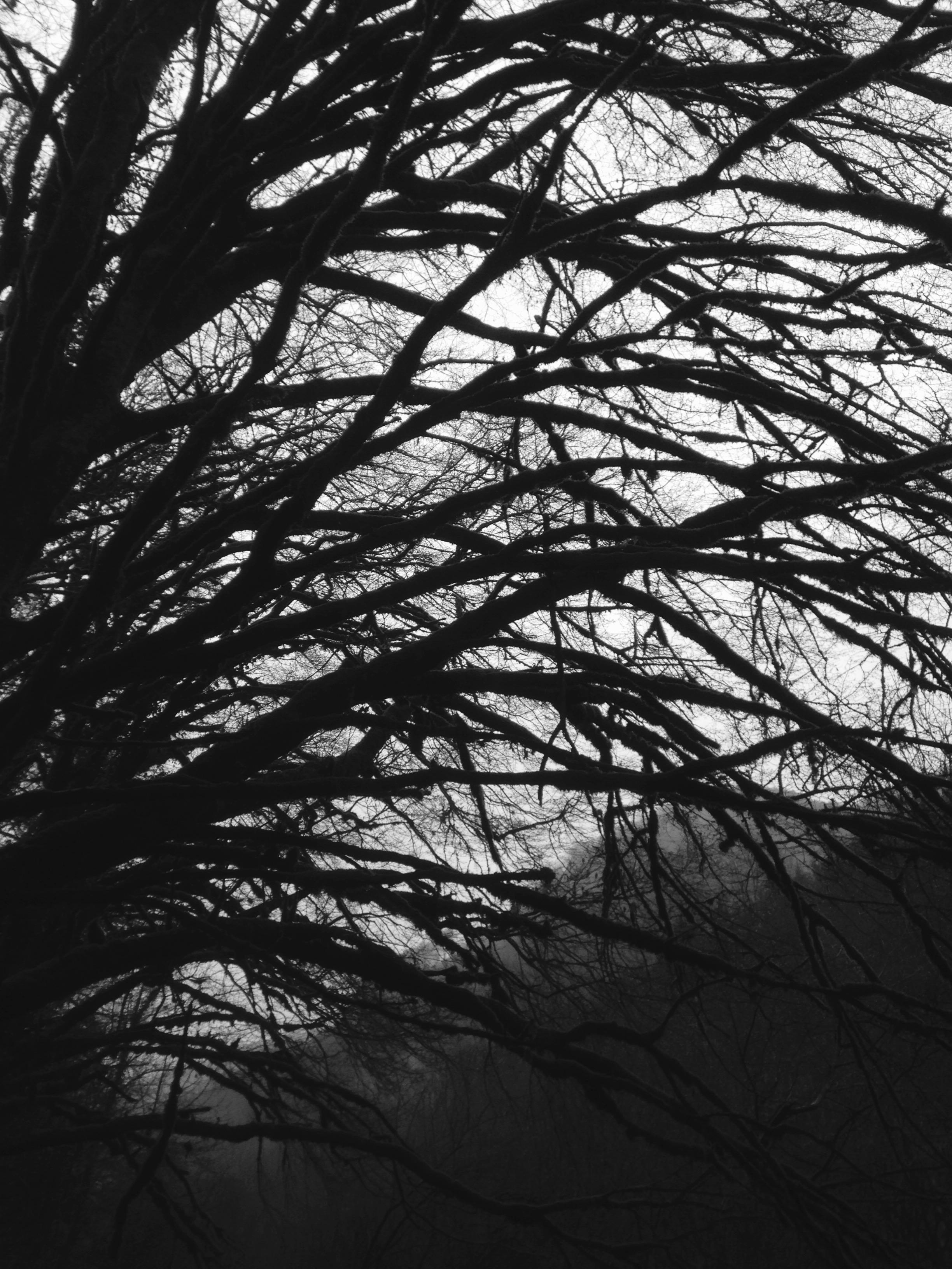 ...même en noir et blanc